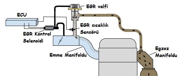 egr sıcaklık sensörü